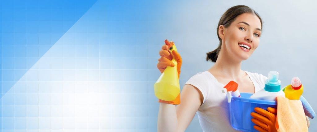 Девушка с моющими средствами