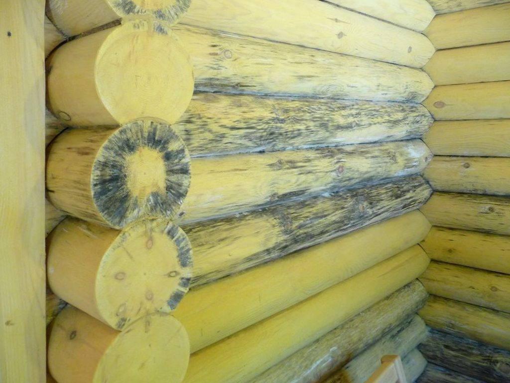 Деревянные брусы с плесенью